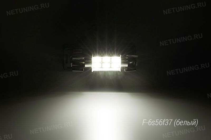 Свечение Solarzen F-6s56f37